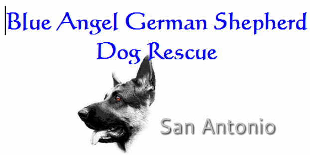 Blue Angel German Shepherd Dog Rescue
